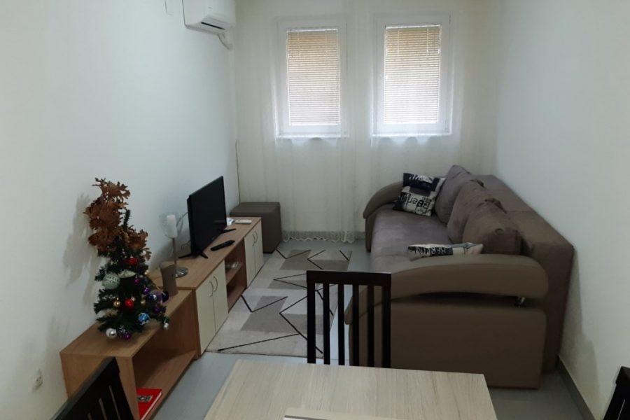 Apartmani JEVTIĆ - Banja Vrujci